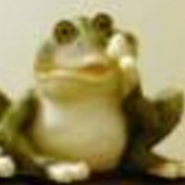 Profile picture of Frogfall